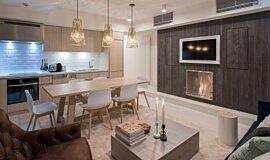 Niseko Builder Fireplaces 嵌入式燃烧室 Idea