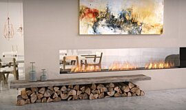 Lounge Area Flex Fireplaces Flex Sery Idea