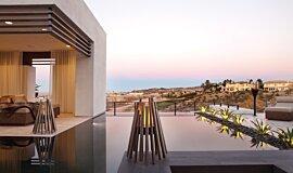 New American Home  Freestanding Fireplaces Braseros éthanol Idea