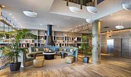 Hilton Auckland NZ Indoor Fireplaces 生物乙醇燃烧器 Idea