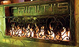 Crinitis Linear Fires Built-In Fire Idea