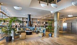 Hilton Auckland NZ Builder Fireplaces 生物乙醇燃烧器 Idea